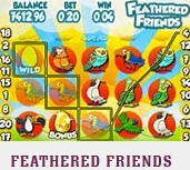 Feathered-Friends